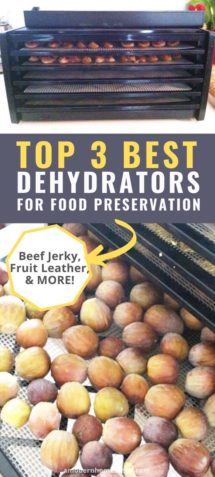 Best dehydrator promo image