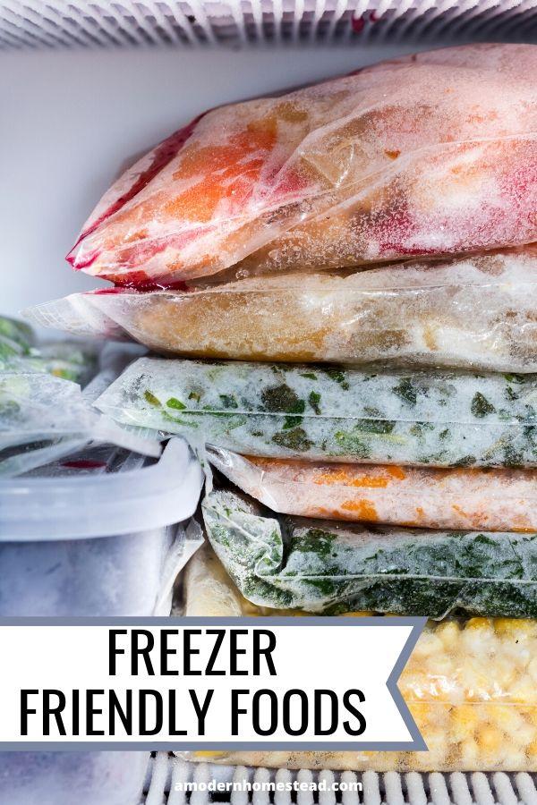 foods in the freezer