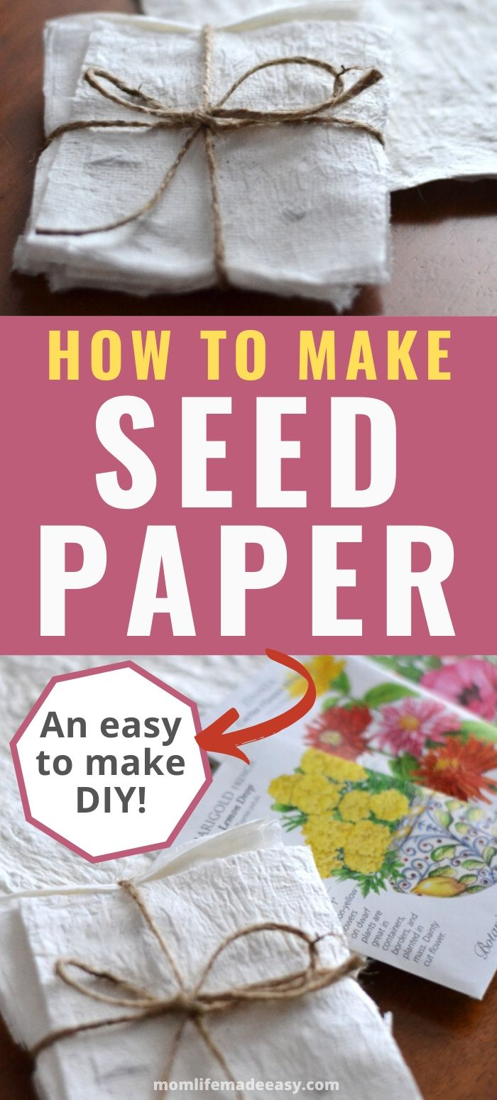 How to Make Organic Seed Paper Pinnable Image
