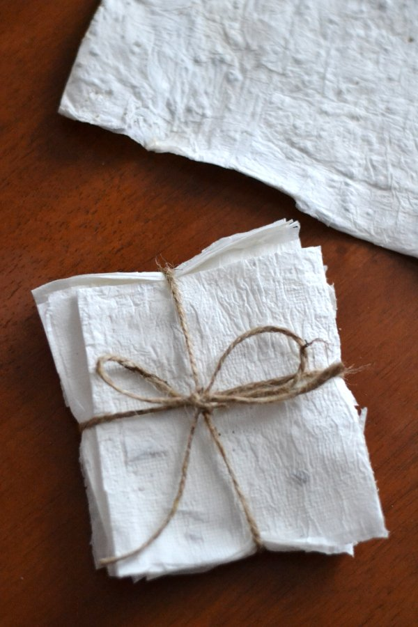 organic seed paper tied with a bow
