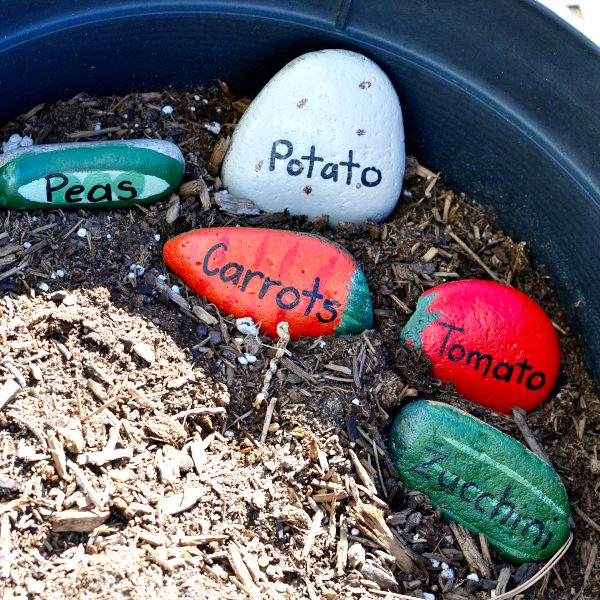 painted rock garden markers in a pot