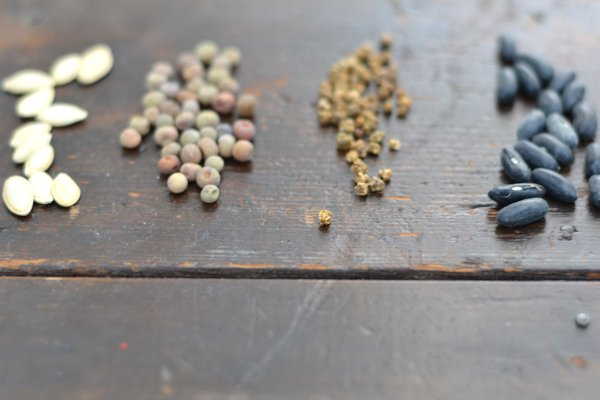 seeds for soaking sitting on a table