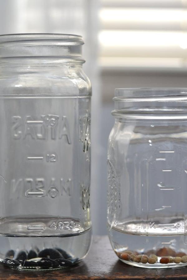 seeds soaking in mason jars