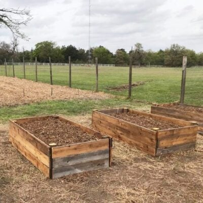DIY raised garden beds in a backyard