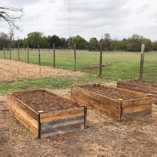 DIY raised garden beds in a backyard