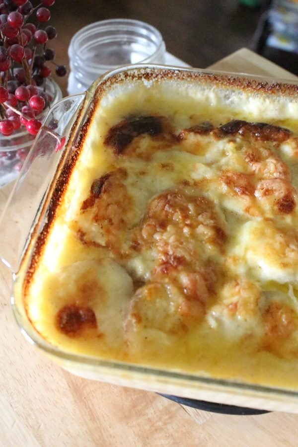 pan of potatoes au gratin straight from the oven