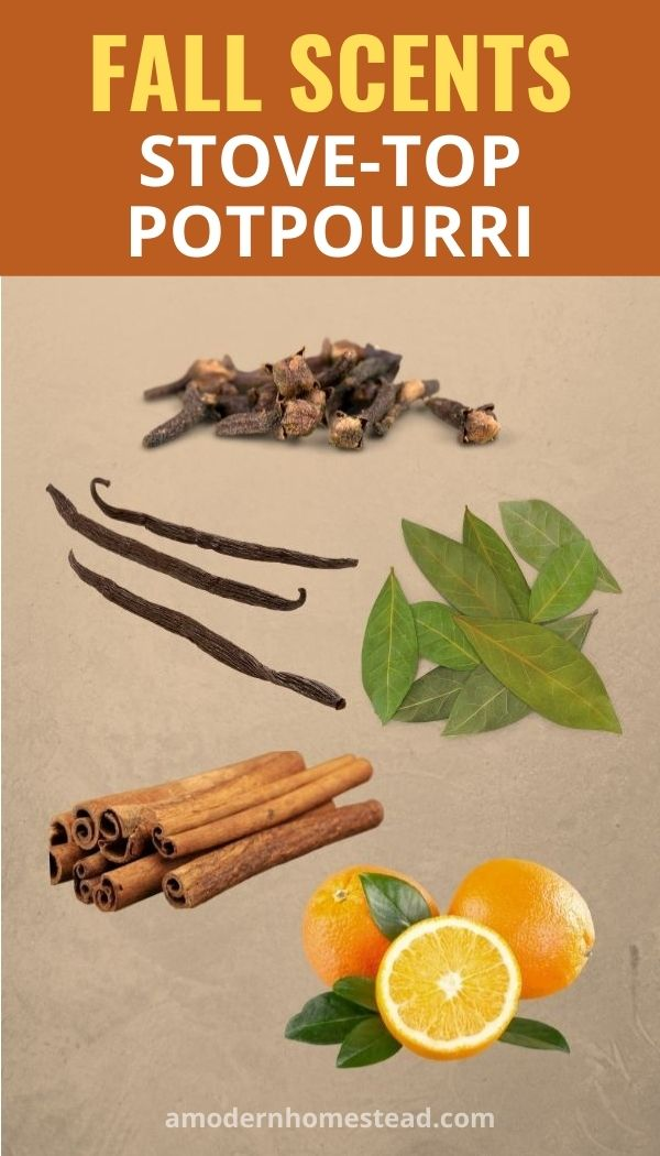 6 Intoxicating Fall And Christmas Stove Top Potpourri Recipes