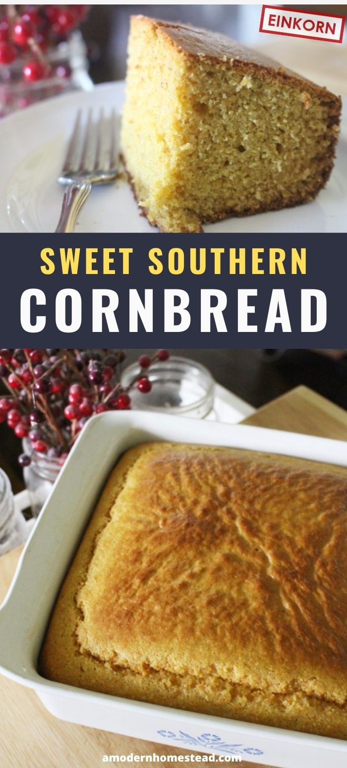 promo images for sweet southern cornbread made with einkorn. Cornbread in 8x8 dish and also a slice on a white plate