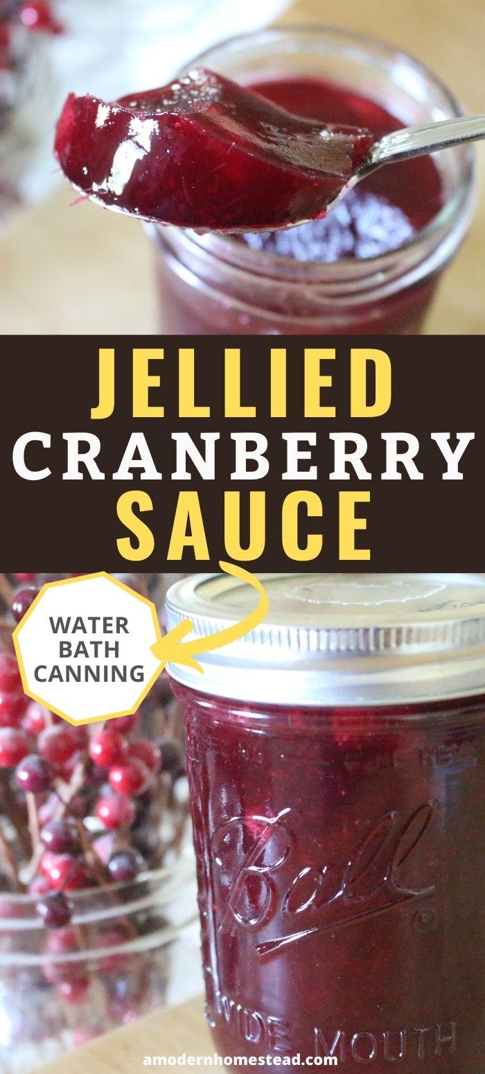 jellied cranberry sauce promo image