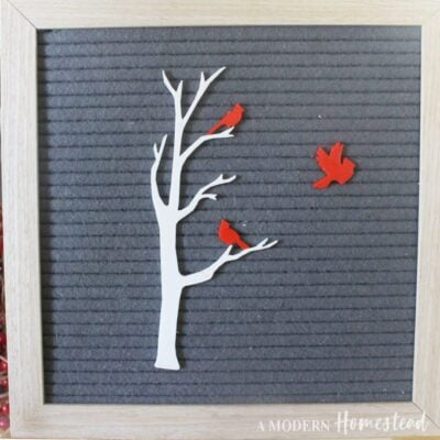 Birch Tree and Cardinal Birds Letter Board Accessories Icon Set on Gray Letterboard