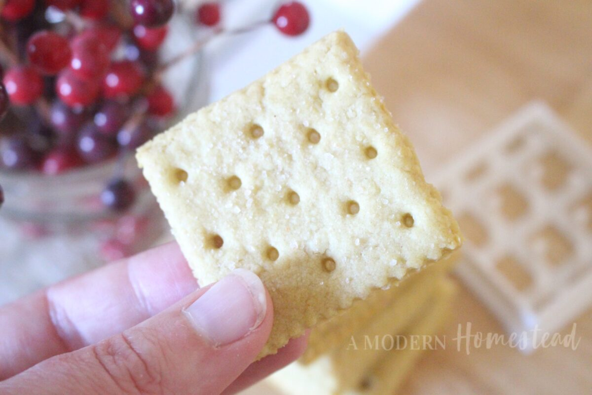 Close up of homemade saltine crackers in hand