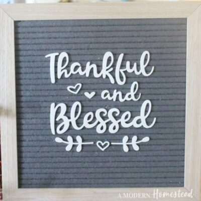 Thankful and Blessed Fall Letterboard Set