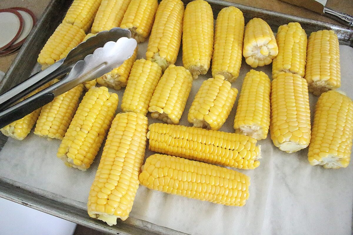 home grown corn on the cob on tray