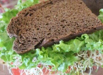 homemade einkorn brown bread veggie sandwich
