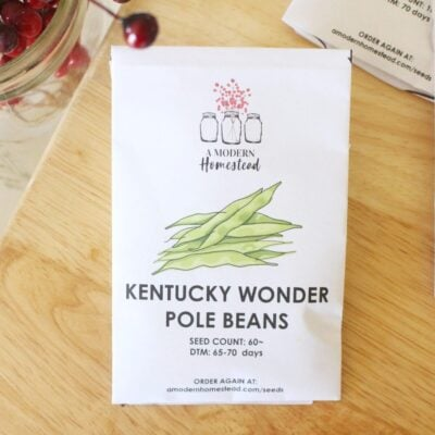 Kentucky Wonder Green Beans Seeds