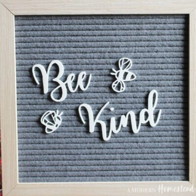 Bee Kind Letterboard Set