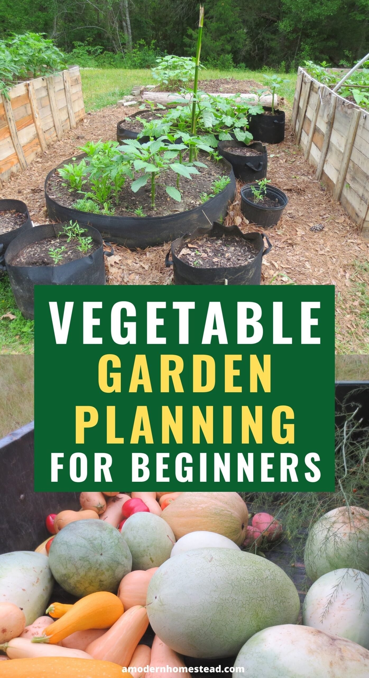 vegetable garden planning for beginners promotional collage