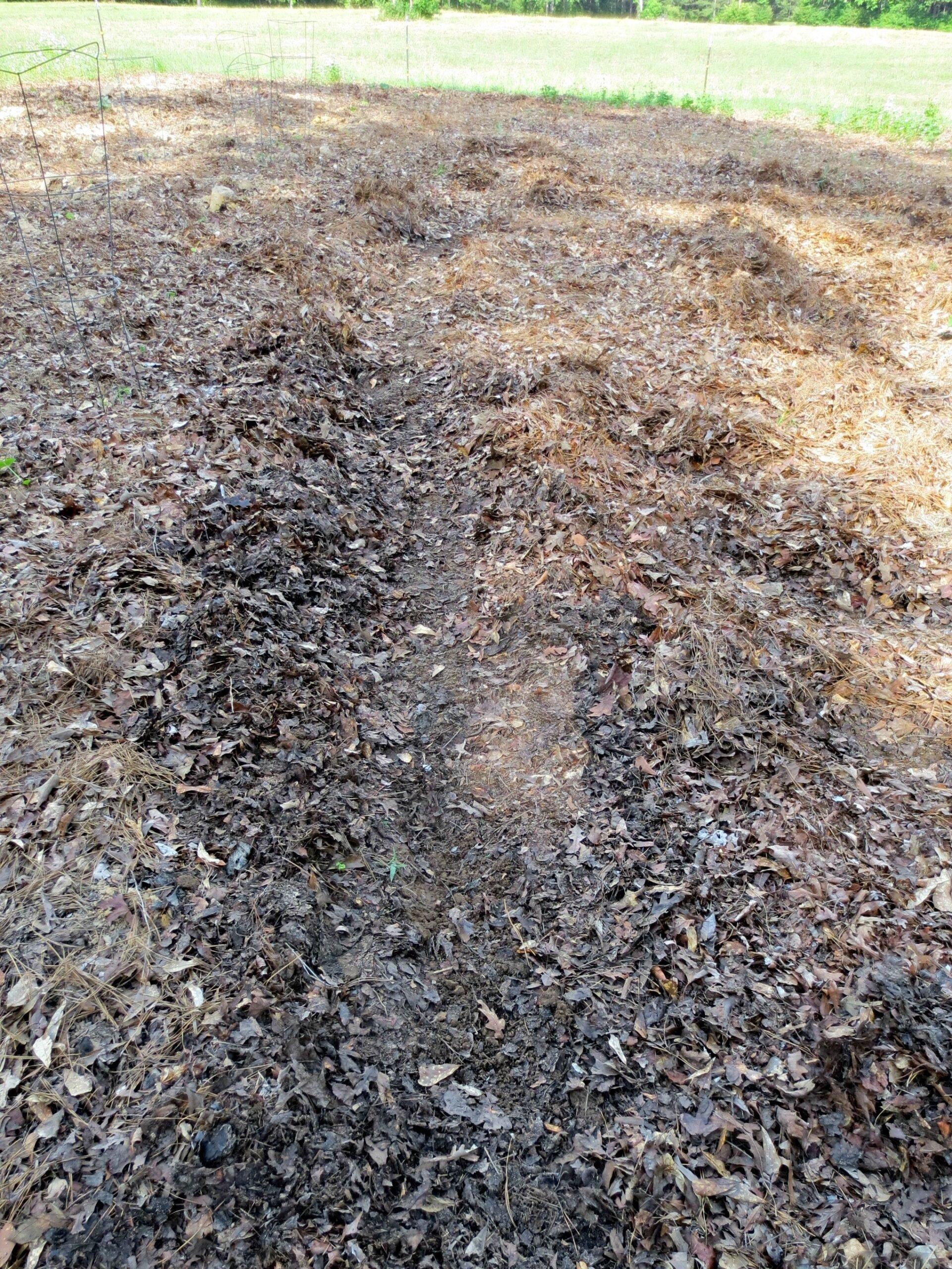 deep mulch soil in a garden