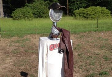 a scarecrow designed to protect the garden from birds